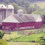 Clatter Valley Farm