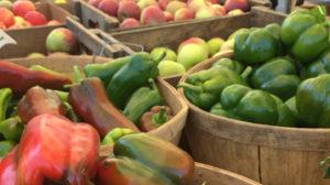 Danbury Farmers' Market Vendors