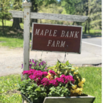 Maple Bank Farm